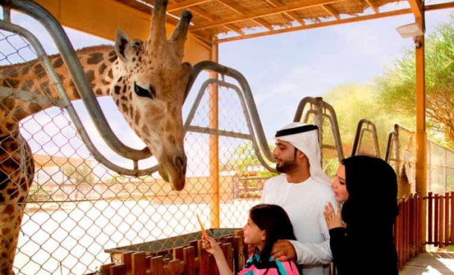 Al Ain Zoo - A Must See Place in Abu Dhabi - Al Ain - Weekend Getaway