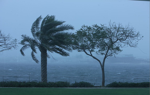 Rain forecast to hit parts of UAE in the next 48 hours
