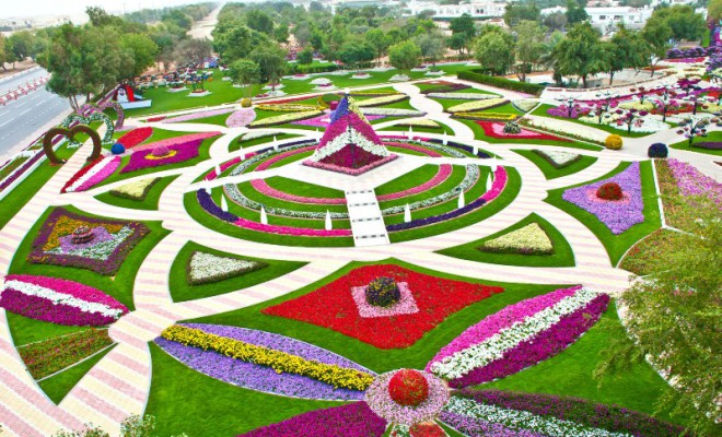 Al Ain Paradise Garden made of Flowers at the Zakher roundabout