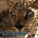 National Geographic Abu Dhabi to sponsor photography contest