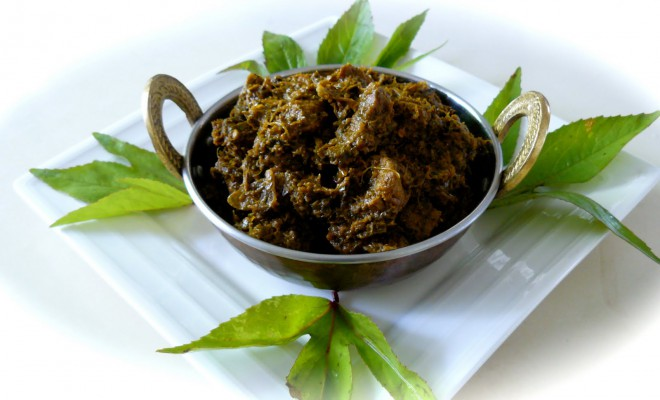 Andhra Pradesh Traditional Indian Cuisine