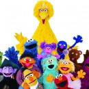 The muppets from Sesame Street-Enter the world of Sesame Street's Elmo ahead of Abu Dhabi Summer Season gig