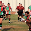 Harlequins and Saracens - Eyes on UAE Premiership Prize