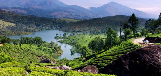 Monsoon destination- Munnar