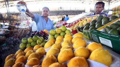 Dubai market gets ready with 'fresher' veggies and fruits