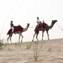 Abu Dhabi seeks to draw visitors from South Africa