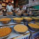 India's Move on Pulse Import Policy