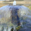 Sharjah, Abu Dhabi join hands to protect groundwater