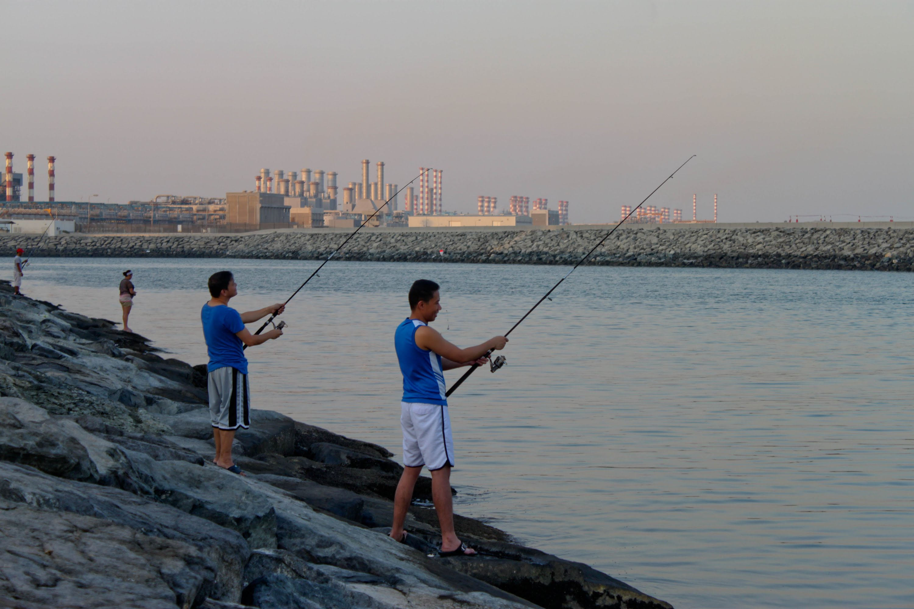 Regulations imposed on recreational fishing in uae for Fishing in dubai