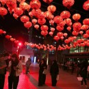 Chinese New Year Celebrations - Culture Event in Abu Dhabi
