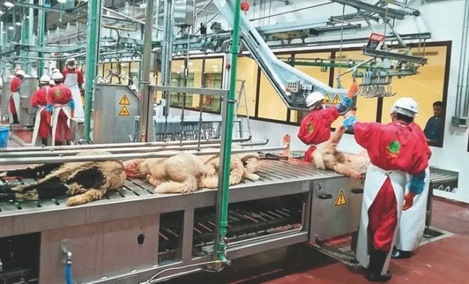 Dh5,000 fine for slaughtering animals at these places in UAE