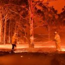 UAE to send 200 volunteers to help fight Australian bushfires
